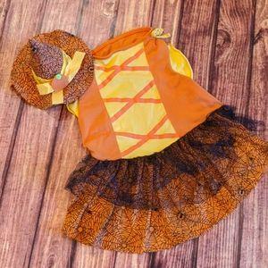 Witch Halloween dog costume, sz XL